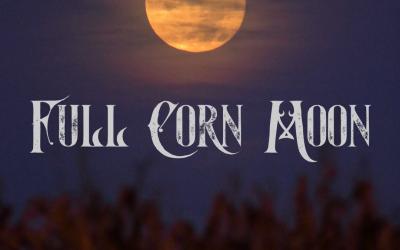 Full Corn Moon Ritual